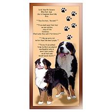 Bernese Mtn Dog s Poster