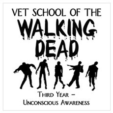 Third Year Vet School Zombies Poster