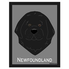 Sweet Newfie Face Poster