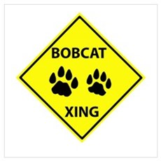 Bobcat Crossing Canvas Art
