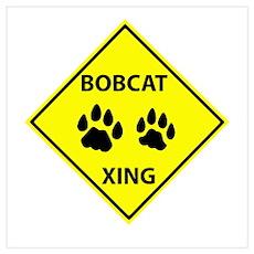 Bobcat Crossing Poster