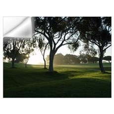 Torrey Pines Wall Decal