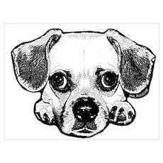 Black & White Puggle Poster