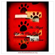 Angel Paw Prints Poster