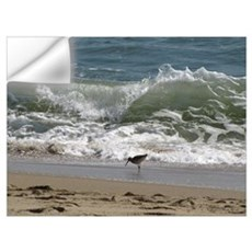 Kill Devil Hills Shore Bird Wall Decal