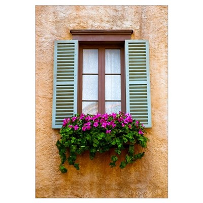 Window Flowers Framed Print