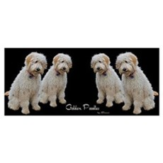 Goldendoodle: Wallace Poster