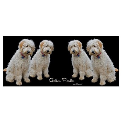 Goldendoodle: Wallace Framed Print