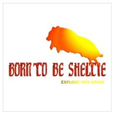 Born to be Sheltie Poster