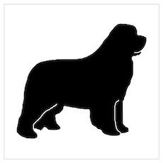 Black Newfoundland Dog Poster