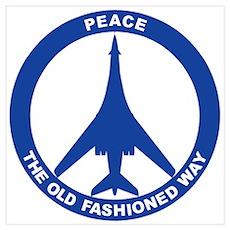 B-1B Peace Sign Poster