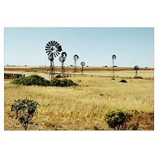 Outback Windmills, SA Poster