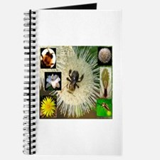 Photo Collage Flora and Fauna Journal