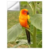 Conure Wall Decals