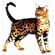 Bengal Cat: Raja Poster