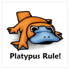 Platypus Rule! Poster