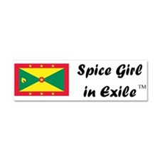 Spice Girl in Exile Car Magne Car Magnet 10 x 3