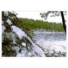 Frozen Pond Poster