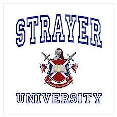 STRAYER University Poster