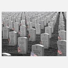 Arlington B&W Flags