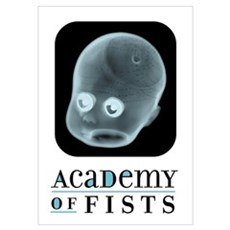 Academy of Fists Poster