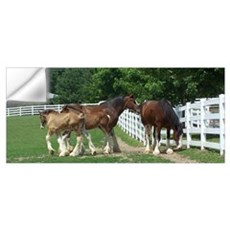 """clydesdales "" Wall Decal"
