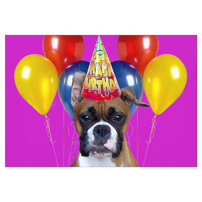 Happy Birthday boxer Poster