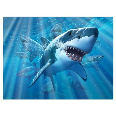 Great White 2 Canvas Art