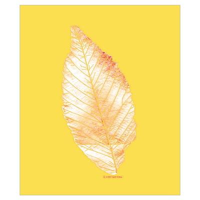 Leave/Leaf/Trees Pop Art Poster