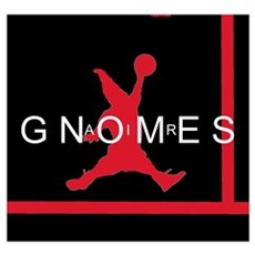 Gnomes Can't Dunk Poster