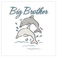 Dolphins Big Brother Poster