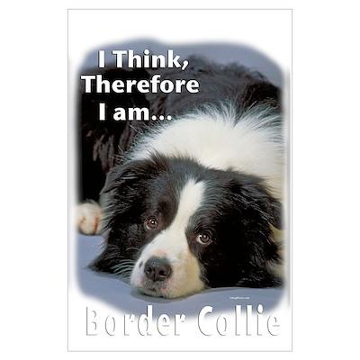 Border Collie-3 Poster