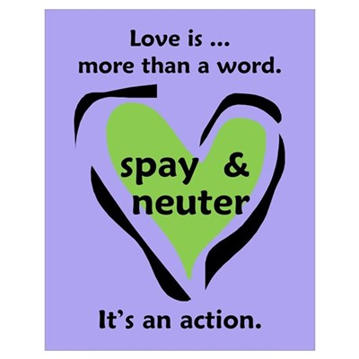 Love Is More Than An Action Poster