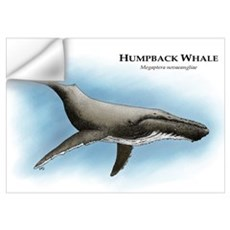 Humpback Whale Wall Decal