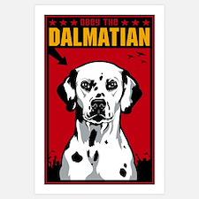 Obey the Dalmatian! Dog