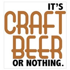 Craft Beer or Nothing Framed Print