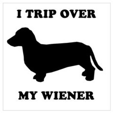 I trip over my wiener Framed Print