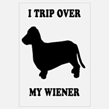 I trip over my wiener