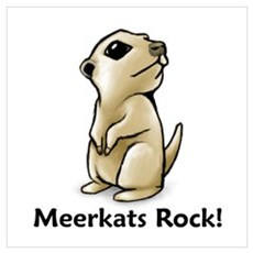 Meerkats Rock! Poster