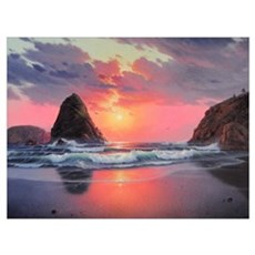 Whaleshead Beach (H) Canvas Art