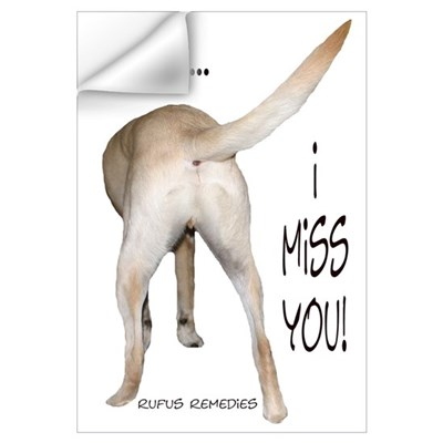 Yellow Lab I Miss You Wall Decal