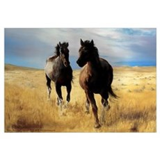Yantis Mustangs Canvas Art