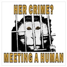 Her Crime? Poster