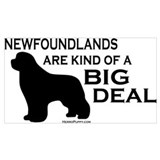Newfoundland dog Wrapped Canvas Art