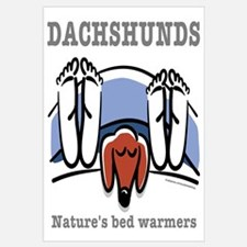 Dachshund bed warmers