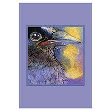Crow Raven Bird Portrait