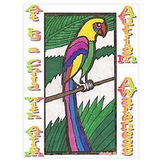 ACA~Parrot Poster