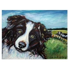 Portrait of a Working Dog~Bor Poster