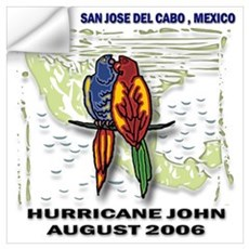 San Jose del Cabo Hurricane John Small Framed Prin Wall Decal
