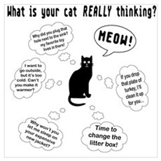 What is your cat thinking? Canvas Art